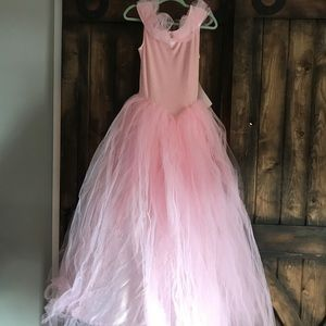 NWT Princess Halloween Gown Queen Pink Dress 4-6 s
